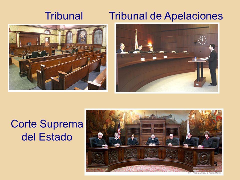 TribunalTribunal de Apelaciones Corte Suprema del Estado