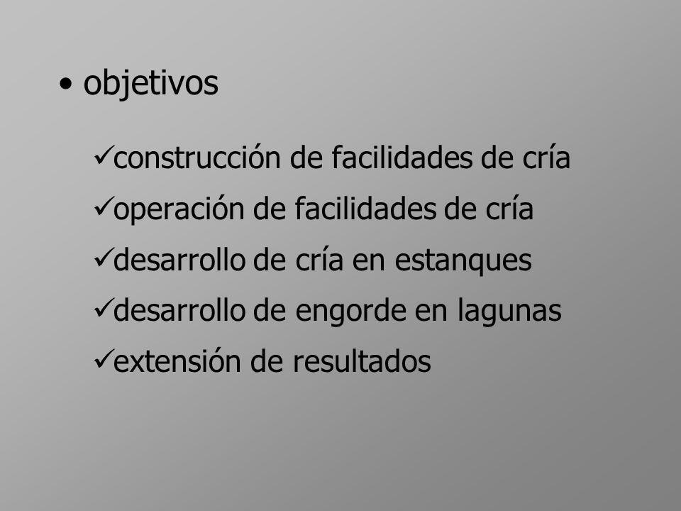 objetivos construcción de facilidades de cría operación de facilidades de cría desarrollo de cría en estanques desarrollo de engorde en lagunas extens