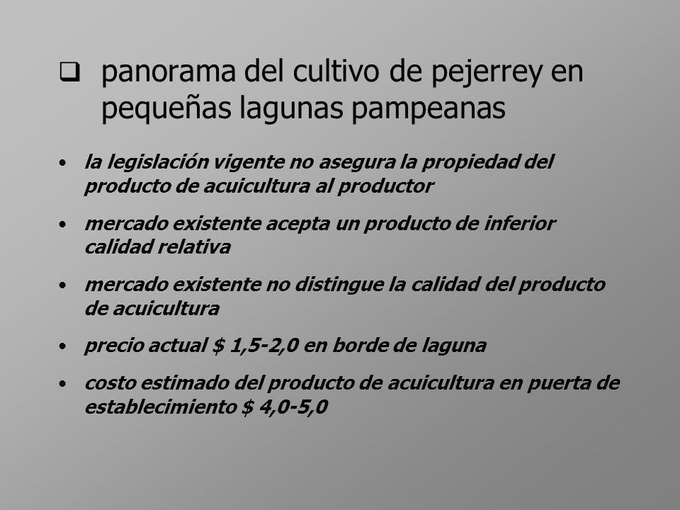 panorama del cultivo de pejerrey en pequeñas lagunas pampeanas la legislación vigente no asegura la propiedad del producto de acuicultura al productor