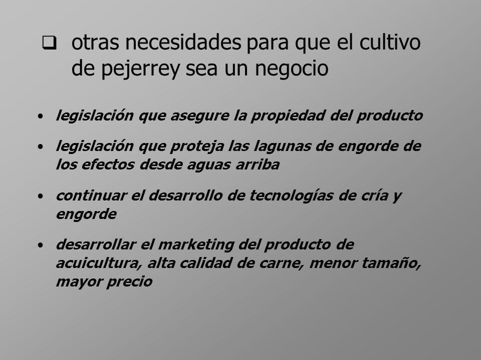 otras necesidades para que el cultivo de pejerrey sea un negocio legislación que asegure la propiedad del producto legislación que proteja las lagunas