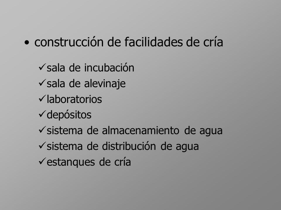construcción de facilidades de cría sala de incubación sala de alevinaje laboratorios depósitos sistema de almacenamiento de agua sistema de distribuc