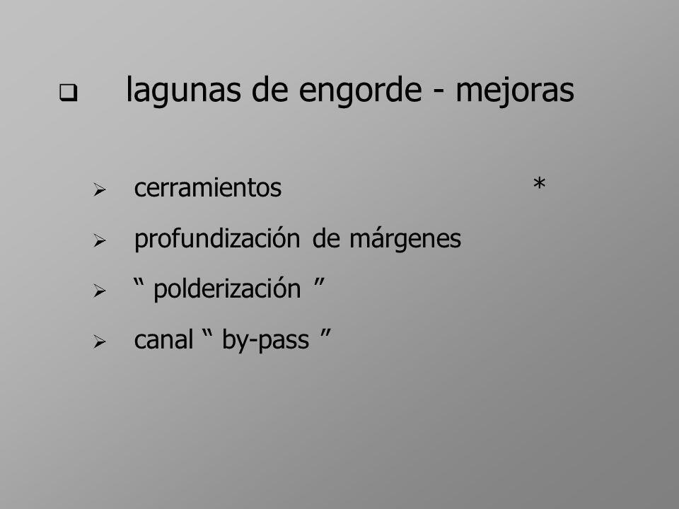 lagunas de engorde - mejoras cerramientos* profundización de márgenes polderización canal by-pass