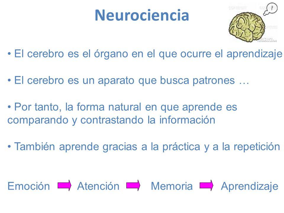 Neurociencia El cerebro es el órgano en el que ocurre el aprendizaje El cerebro es un aparato que busca patrones … Por tanto, la forma natural en que aprende es comparando y contrastando la información También aprende gracias a la práctica y a la repetición Emoción Atención Memoria Aprendizaje