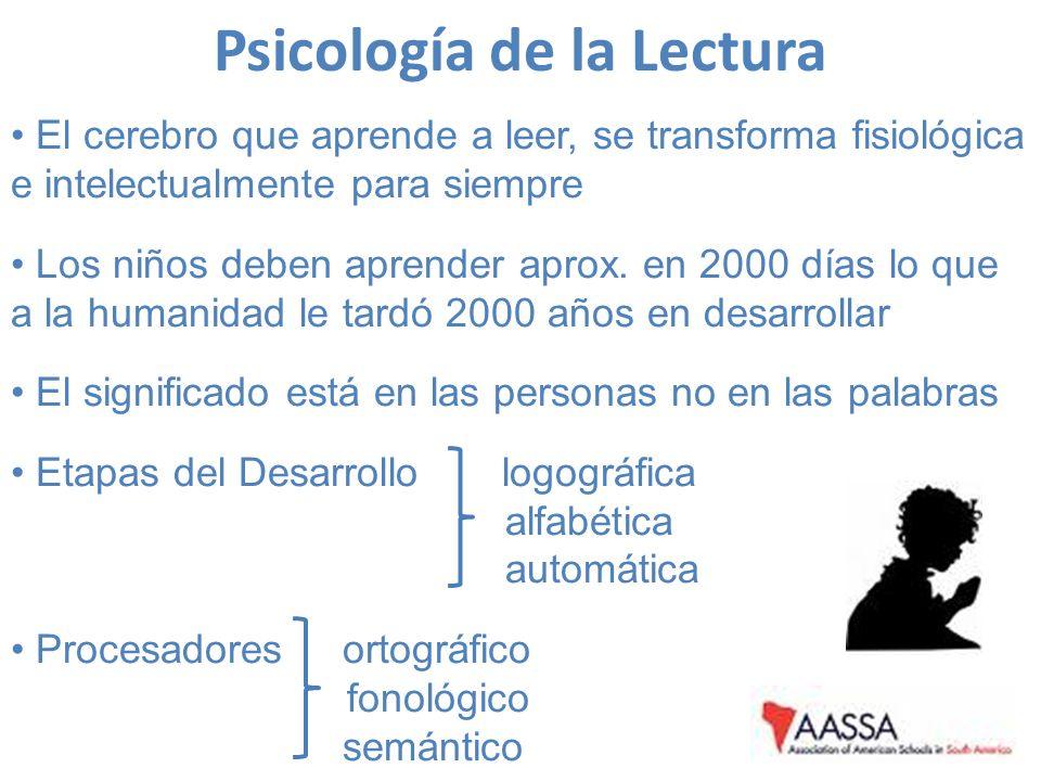 Psicología de la Lectura El cerebro que aprende a leer, se transforma fisiológica e intelectualmente para siempre Los niños deben aprender aprox. en 2