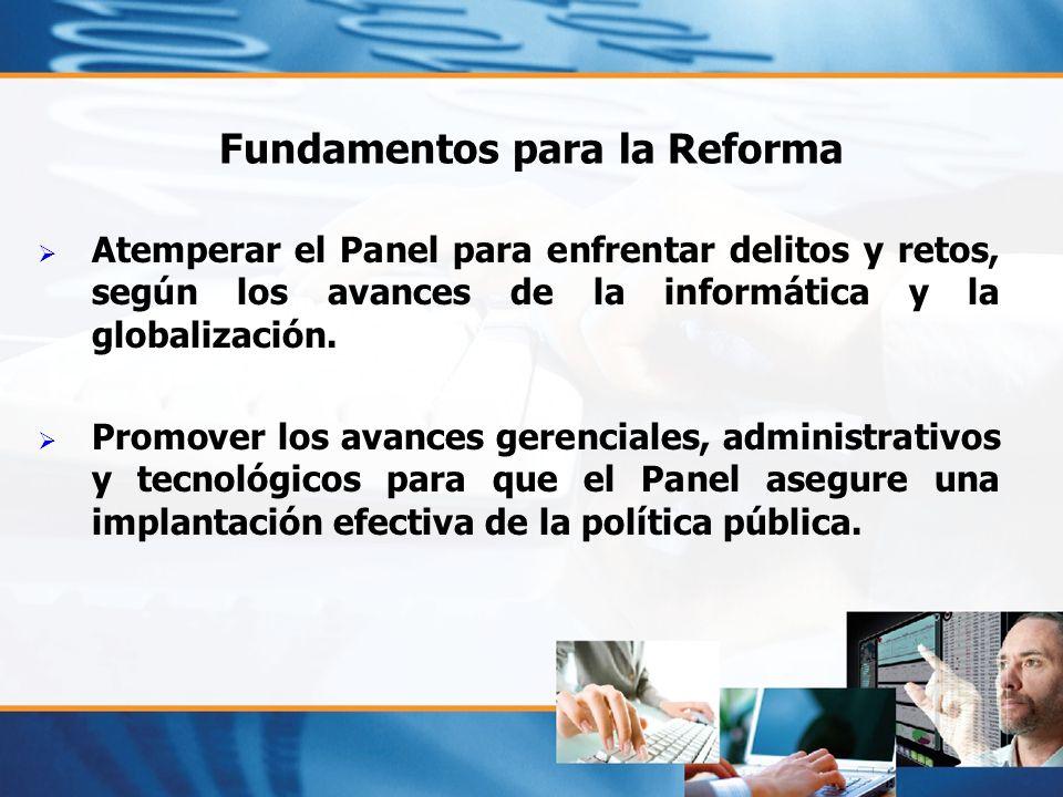 Fundamentos para la Reforma Atemperar el Panel para enfrentar delitos y retos, según los avances de la informática y la globalización. Promover los av