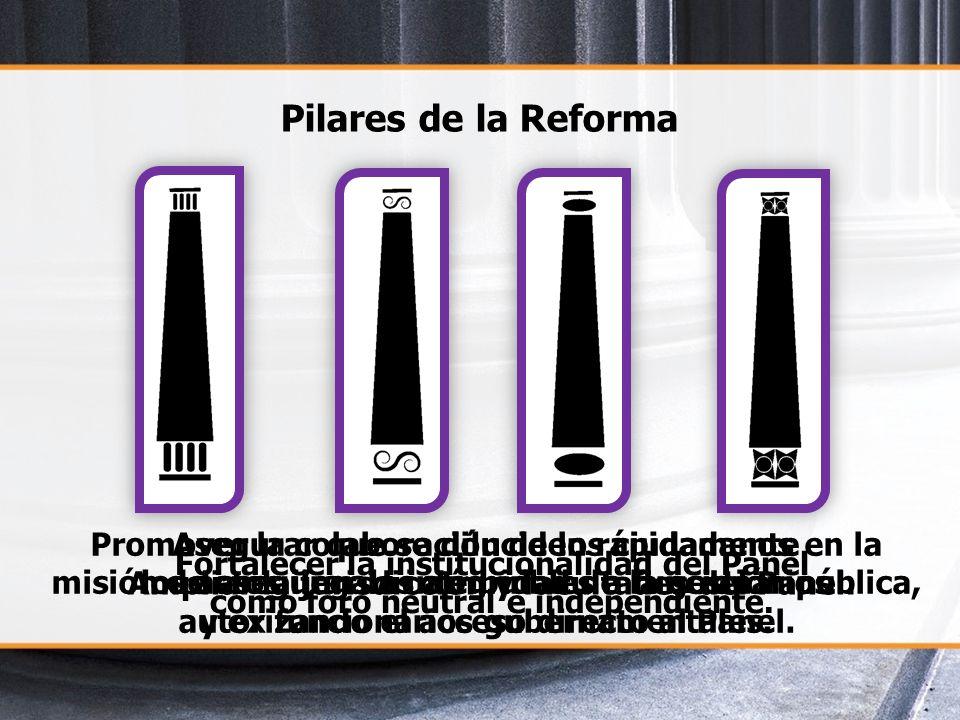 Pilares de la Reforma Fortalecer la institucionalidad del Panel como foro neutral e independiente. Ampliar la jurisdicción y facultades del Panel. Pro