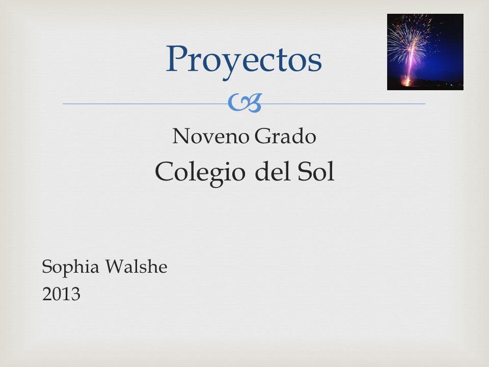 Noveno Grado Colegio del Sol Sophia Walshe 2013 Proyectos