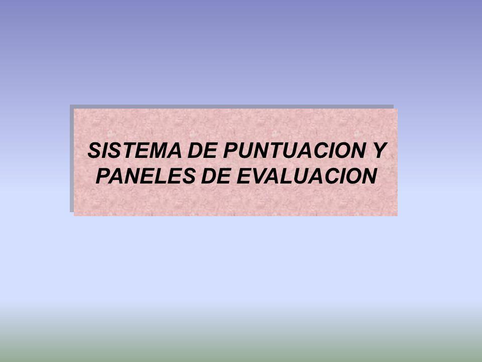 SISTEMA DE PUNTUACION Y PANELES DE EVALUACION SISTEMA DE PUNTUACION Y PANELES DE EVALUACION