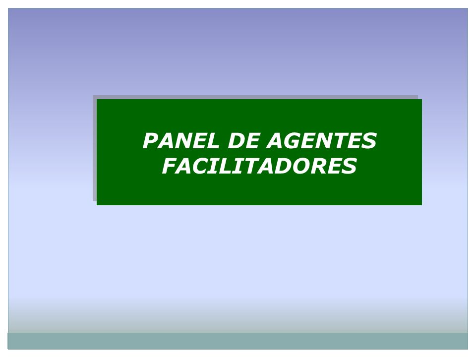 PANEL DE AGENTES FACILITADORES PANEL DE AGENTES FACILITADORES