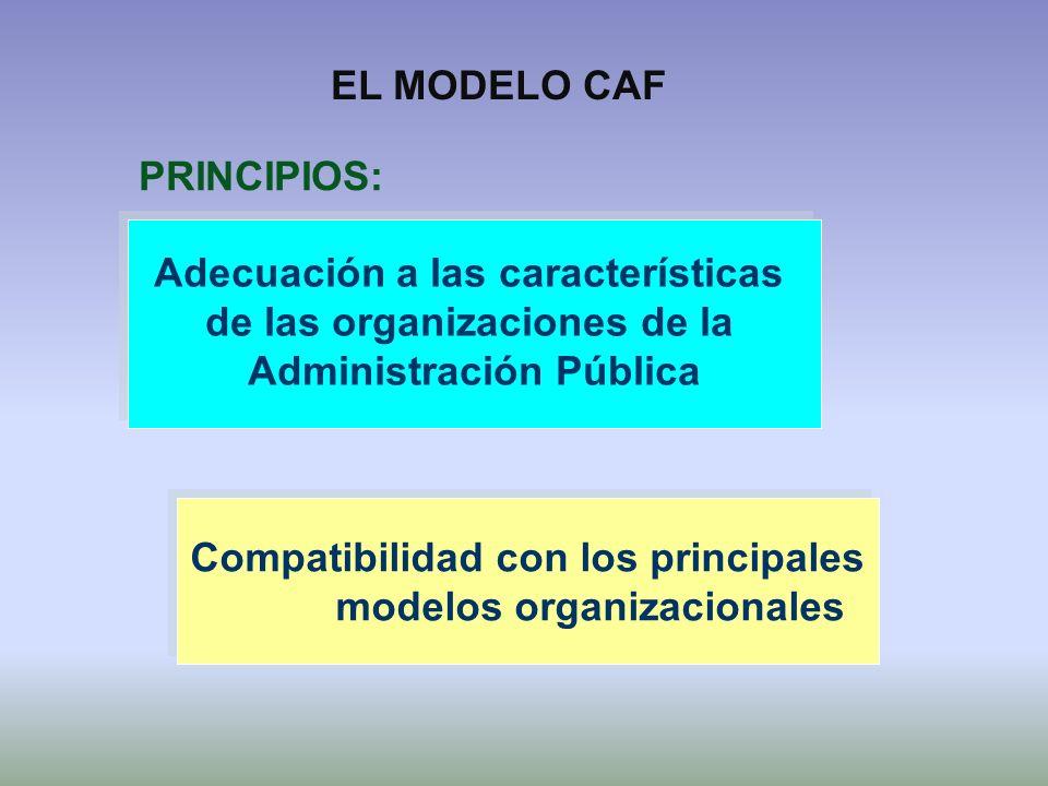 Adecuación a las características de las organizaciones de la Administración Pública Adecuación a las características de las organizaciones de la Admin