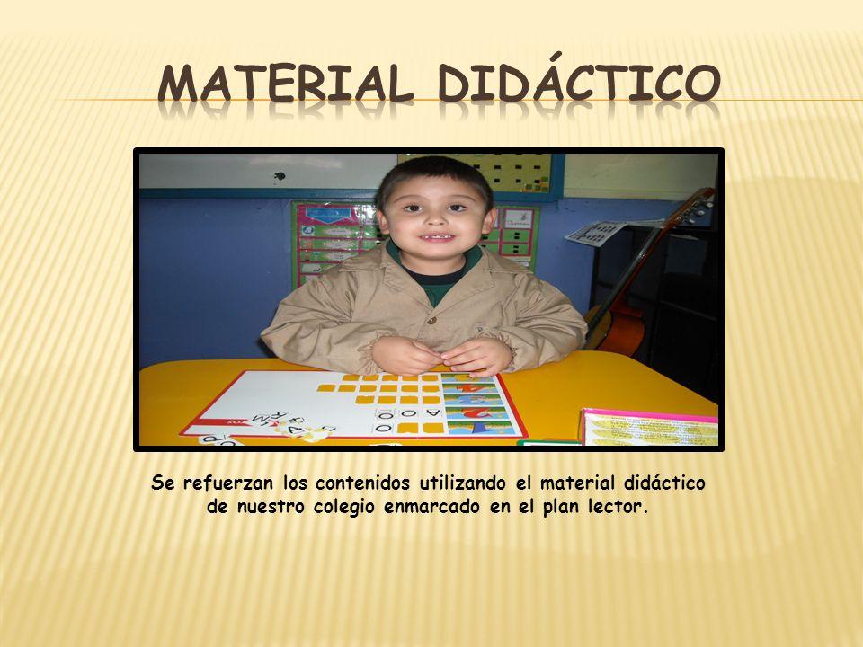 Se refuerzan los contenidos utilizando el material didáctico de nuestro colegio enmarcado en el plan lector.