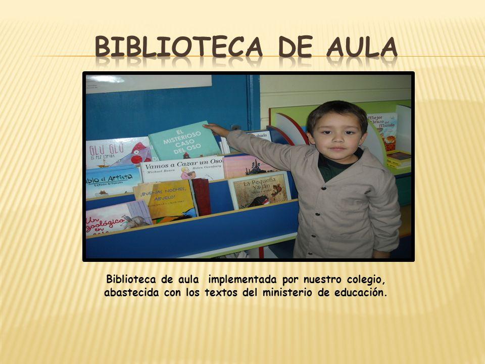 Biblioteca de aula implementada por nuestro colegio, abastecida con los textos del ministerio de educación.