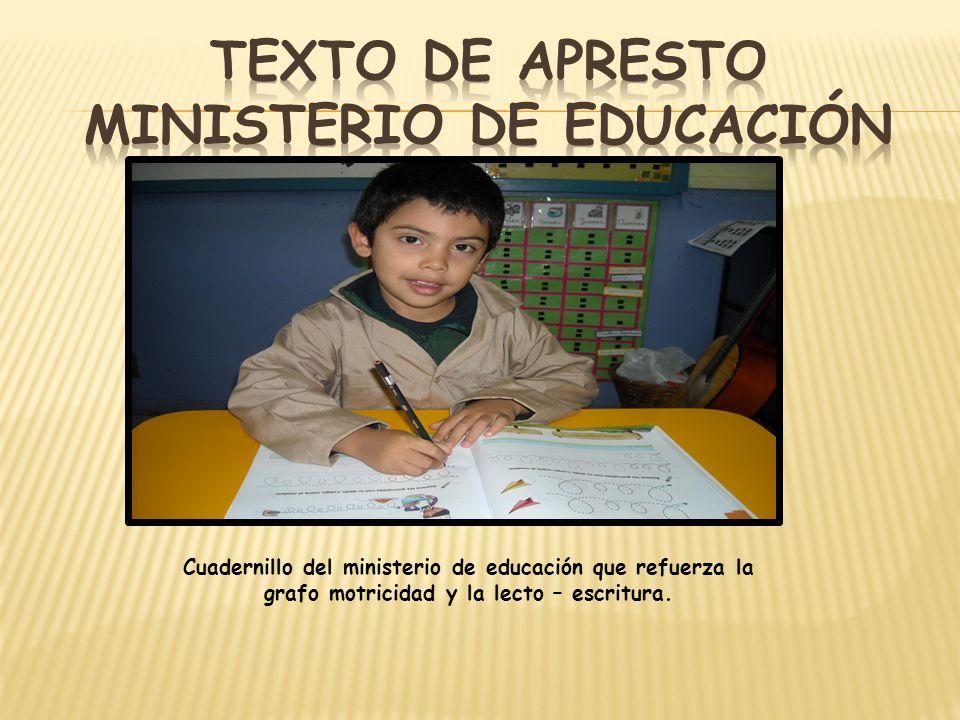 Cuadernillo del ministerio de educación que refuerza la grafo motricidad y la lecto – escritura.