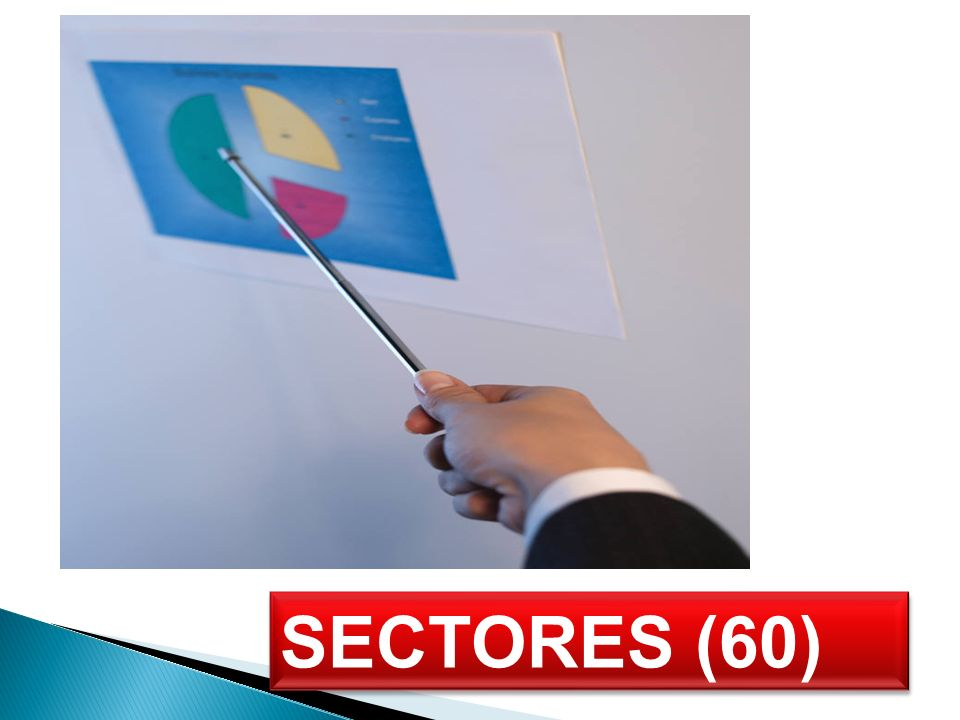 SECTORES (60)