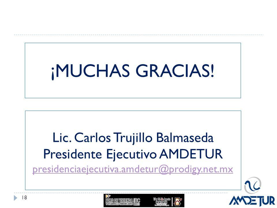 ¡MUCHAS GRACIAS! 18 Lic. Carlos Trujillo Balmaseda Presidente Ejecutivo AMDETUR presidenciaejecutiva.amdetur@prodigy.net.mx