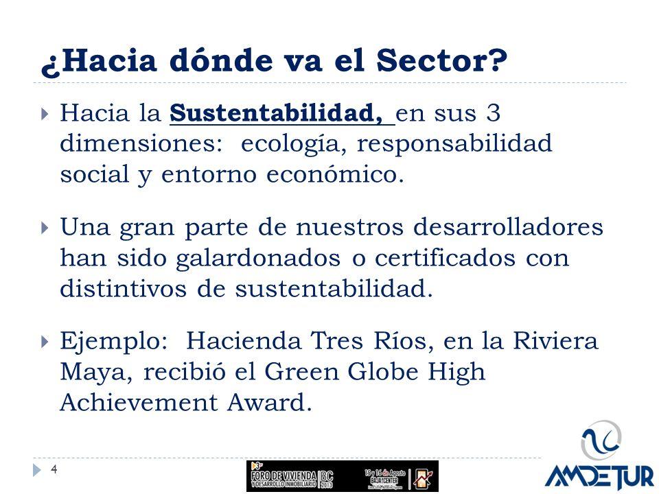 ¿Hacia dónde va el Sector? Hacia la Sustentabilidad, en sus 3 dimensiones: ecología, responsabilidad social y entorno económico. Una gran parte de nue