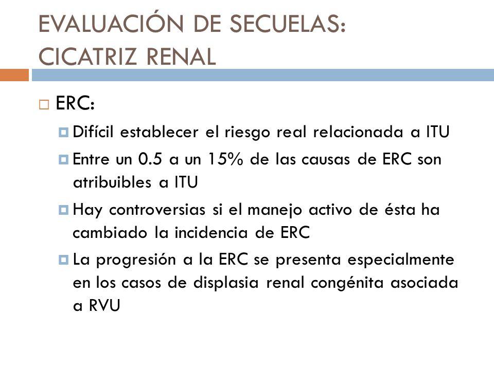 DMSA tardío (después de 6 a 12 meses): prueba de referencia para el diagnóstico de defectos parenquimatosos Si es normal, no hay riesgo de CR.