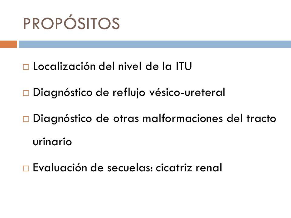 LOCALIZACIÓN DEL NIVEL DE ITU Sólo la ITU alta tiene riesgo de cicatriz renal.
