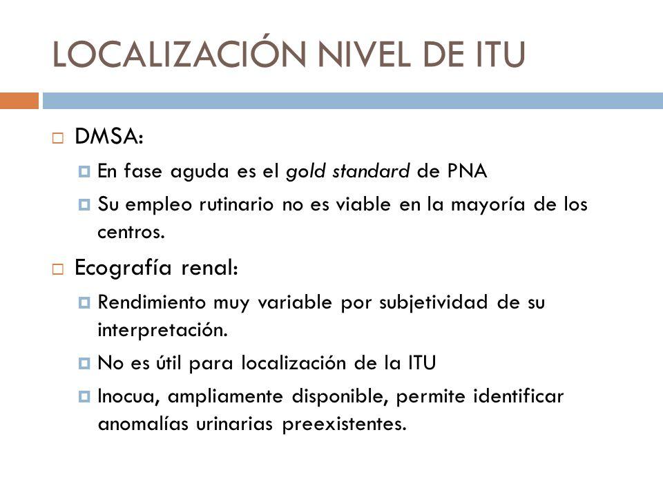 Ecografía renal con power doppler: Evalúa la perfusión renal regional, que se encuentra afectada en la infección aguda Buena correlación con el DMSA en la fase aguda.