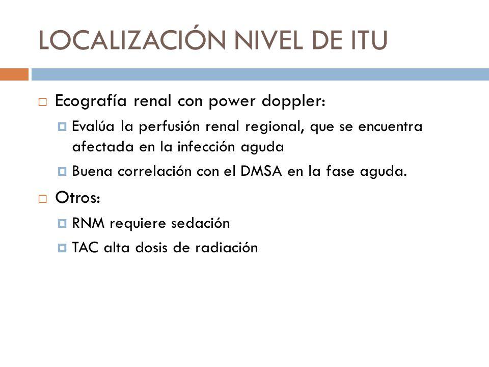 Ecografía renal con power doppler: Evalúa la perfusión renal regional, que se encuentra afectada en la infección aguda Buena correlación con el DMSA e