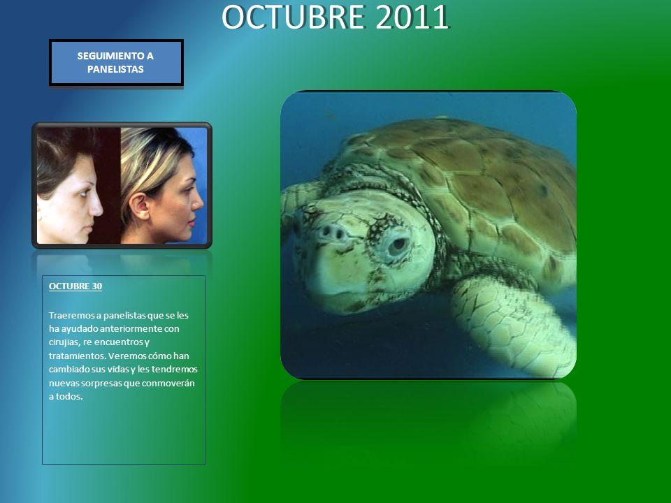 OCTUBRE 2011 OCTUBRE 30 Traeremos a panelistas que se les ha ayudado anteriormente con cirujias, re encuentros y tratamientos.