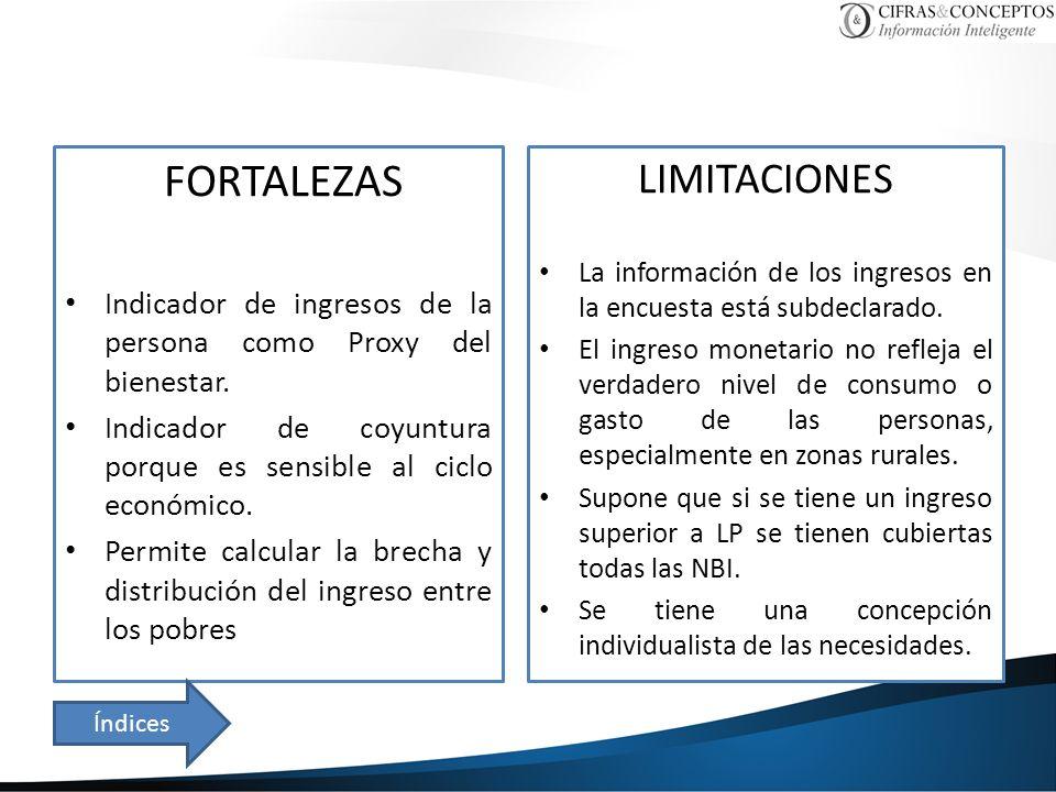 FORTALEZAS Indicador de ingresos de la persona como Proxy del bienestar.