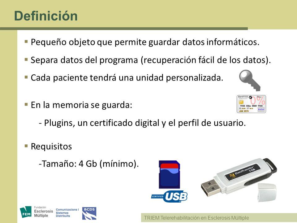 TRIEM:Telerehabilitación en Esclerosis Múltiple Definición Pequeño objeto que permite guardar datos informáticos. Separa datos del programa (recuperac