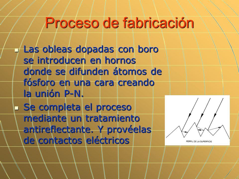 Proceso de fabricación Las obleas dopadas con boro se introducen en hornos donde se difunden átomos de fósforo en una cara creando la unión P-N. Las o