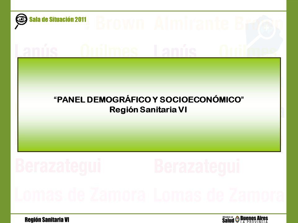 PANEL DEMOGRÁFICO Y SOCIOECONÓMICO Región Sanitaria VI