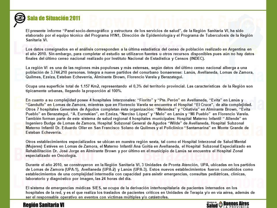 El presente informe Panel socio-demográfico y estructura de los servicios de salud, de la Región Sanitaria VI, ha sido elaborado por el equipo técnico