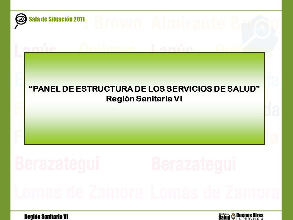 PANEL DE ESTRUCTURA DE LOS SERVICIOS DE SALUD Región Sanitaria VI