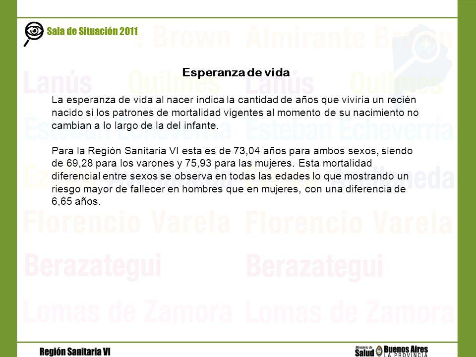 Total de consultas externas en establecimientos municipales- RS VI. Año 2009