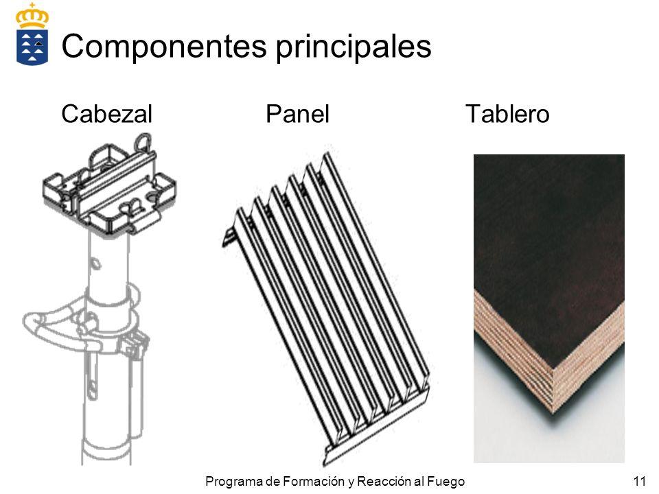 11 Componentes principales Cabezal Panel Tablero Programa de Formación y Reacción al Fuego