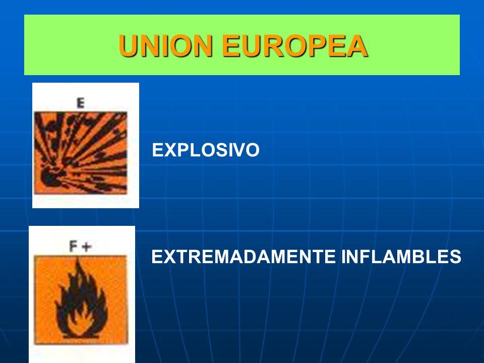 SISTEMA DE UNION EUROPEA Si bien en el transporte internacional se emplearán los pictogramas reconocidos por las Naciones Unidas, en el marco de la Un