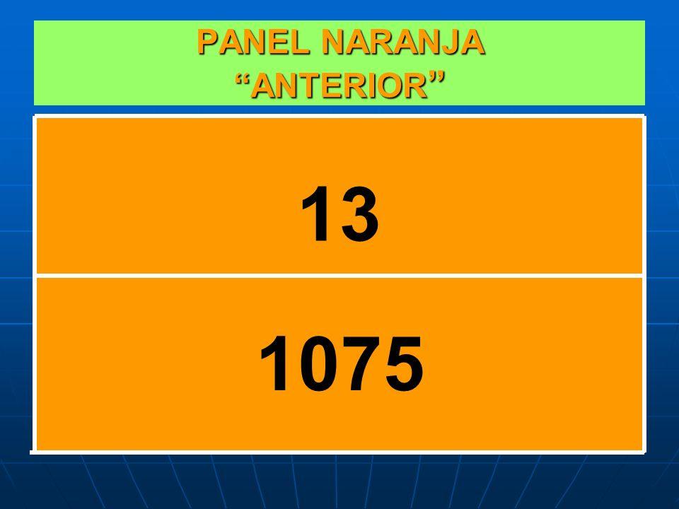 PANEL NARANJA ACTUALMENTE 23 1075