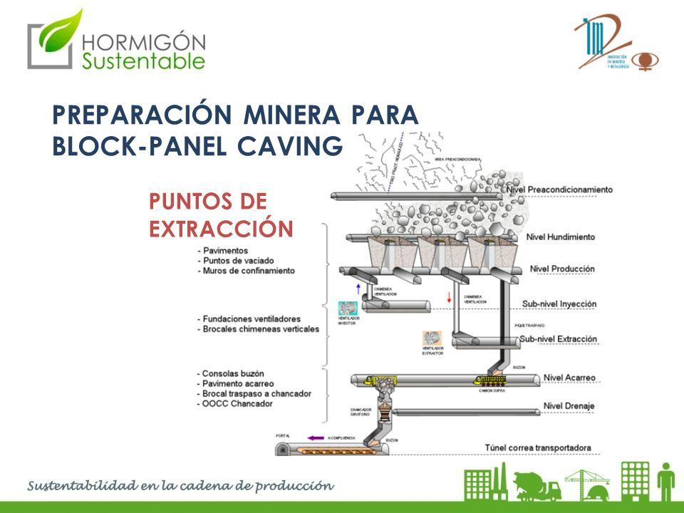 PREPARACIÓN MINERA PARA BLOCK-PANEL CAVING PUNTOS DE EXTRACCIÓN