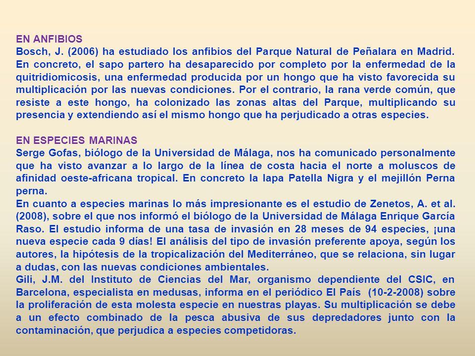 EN ANFIBIOS Bosch, J. (2006) ha estudiado los anfibios del Parque Natural de Peñalara en Madrid. En concreto, el sapo partero ha desaparecido por comp