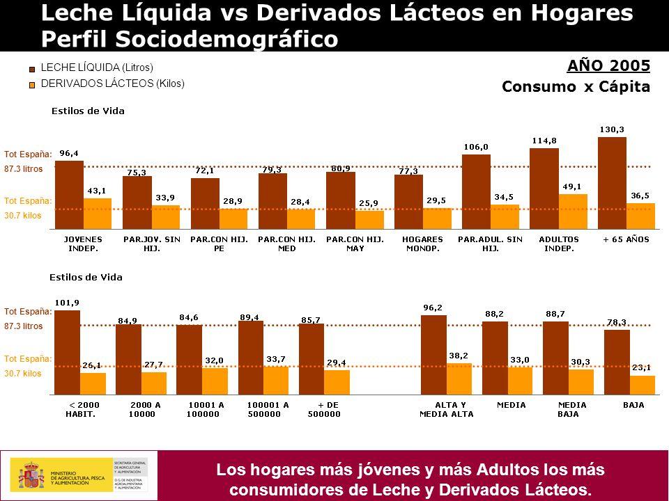 Leche Líquida vs Derivados Lácteos en Hogares Perfil Sociodemográfico AÑO 2005 Consumo x Cápita LECHE LÍQUIDA (Litros) DERIVADOS LÁCTEOS (Kilos) Tot España: 87.3 litros Tot España: 30.7 kilos Tot España: 87.3 litros Tot España: 30.7 kilos Los hogares más jóvenes y más Adultos los más consumidores de Leche y Derivados Lácteos.