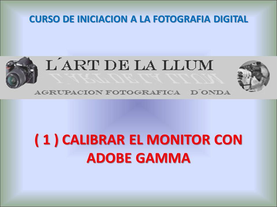 ( 1 ) CALIBRAR EL MONITOR CON ADOBE GAMMA CURSO DE INICIACION A LA FOTOGRAFIA DIGITAL