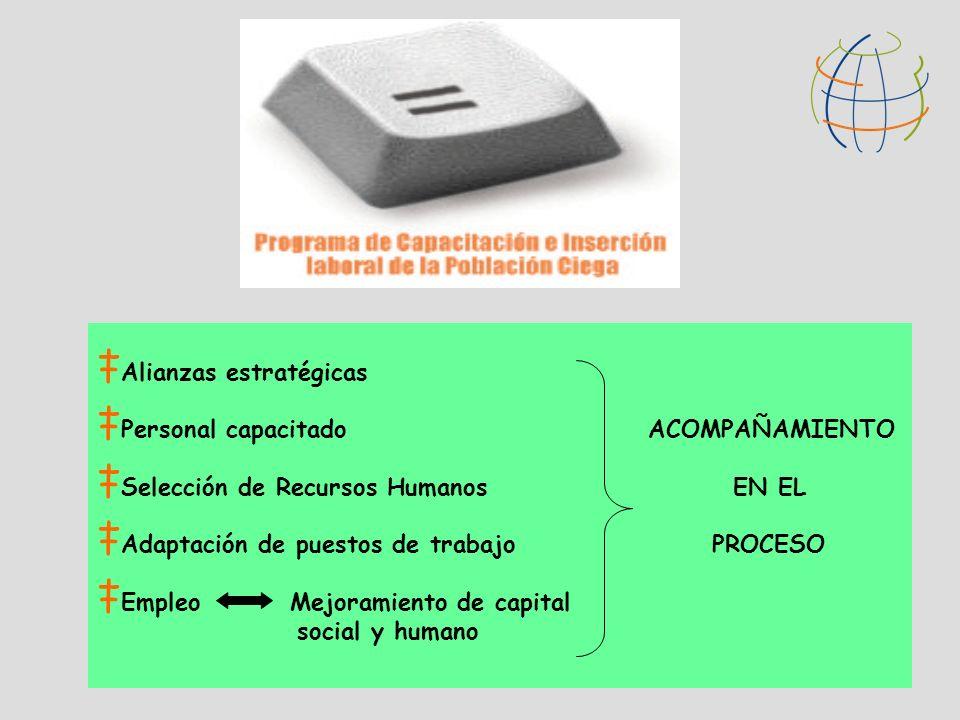 Alianzas estratégicas Personal capacitado ACOMPAÑAMIENTO Selección de Recursos Humanos EN EL Adaptación de puestos de trabajo PROCESO Empleo Mejoramie