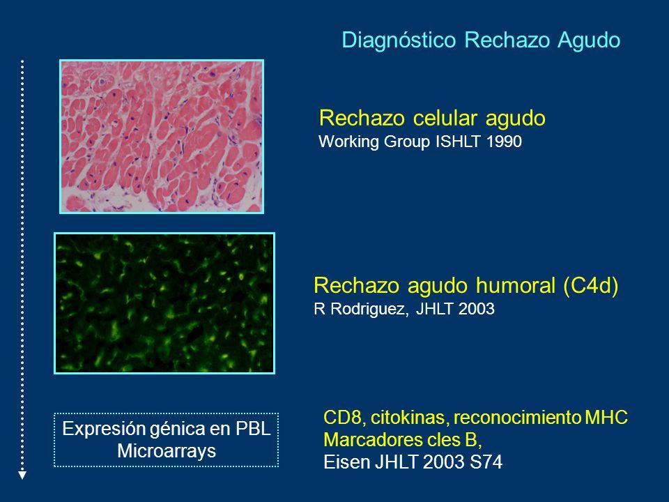 Rechazo celular agudo Working Group ISHLT 1990 Rechazo agudo humoral (C4d) R Rodriguez, JHLT 2003 Expresión génica en PBL Microarrays CD8, citokinas,