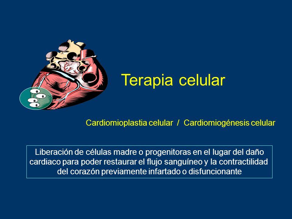 Terapia celular Liberación de células madre o progenitoras en el lugar del daño cardiaco para poder restaurar el flujo sanguíneo y la contractilidad d
