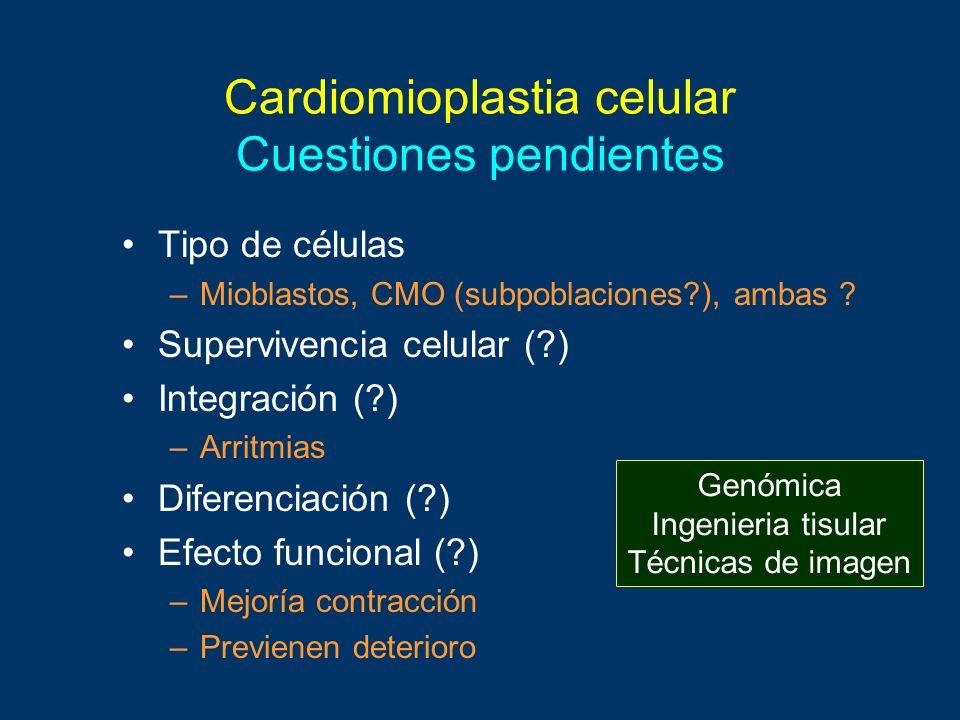 Cardiomioplastia celular Cuestiones pendientes Tipo de células –Mioblastos, CMO (subpoblaciones?), ambas ? Supervivencia celular (?) Integración (?) –