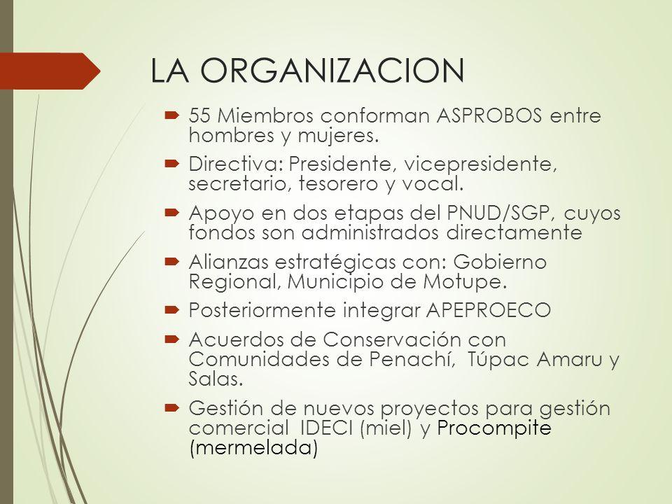 55 Miembros conforman ASPROBOS entre hombres y mujeres. Directiva: Presidente, vicepresidente, secretario, tesorero y vocal. Apoyo en dos etapas del P