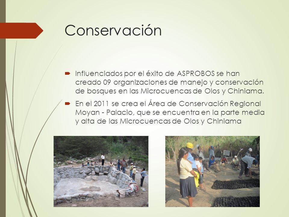 Conservación Influenciados por el éxito de ASPROBOS se han creado 09 organizaciones de manejo y conservación de bosques en las Microcuencas de Olos y Chiniama.