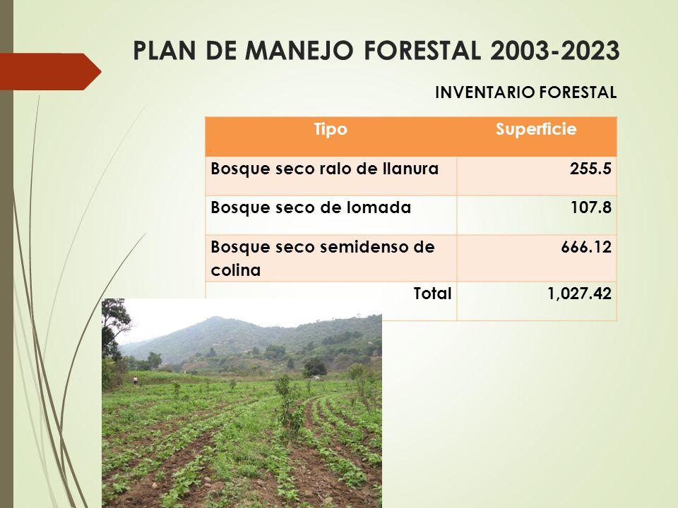 TipoSuperficie Bosque seco ralo de llanura255.5 Bosque seco de lomada107.8 Bosque seco semidenso de colina 666.12 Total 1,027.42 PLAN DE MANEJO FORESTAL 2003-2023 INVENTARIO FORESTAL