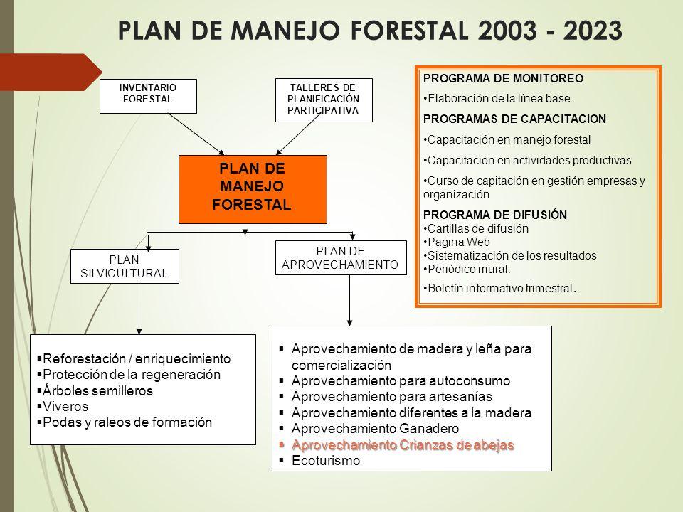 PLAN DE MANEJO FORESTAL 2003 - 2023 Reforestación / enriquecimiento Protección de la regeneración Árboles semilleros Viveros Podas y raleos de formación PLAN DE MANEJO FORESTAL Aprovechamiento de madera y leña para comercialización Aprovechamiento para autoconsumo Aprovechamiento para artesanías Aprovechamiento diferentes a la madera Aprovechamiento Ganadero Aprovechamiento Crianzas de abejas Aprovechamiento Crianzas de abejas Ecoturismo INVENTARIO FORESTAL TALLERES DE PLANIFICACIÓN PARTICIPATIVA PLAN SILVICULTURAL PLAN DE APROVECHAMIENTO PROGRAMA DE MONITOREO Elaboración de la línea base PROGRAMAS DE CAPACITACION Capacitación en manejo forestal Capacitación en actividades productivas Curso de capitación en gestión empresas y organización PROGRAMA DE DIFUSIÓN Cartillas de difusión Pagina Web Sistematización de los resultados Periódico mural.