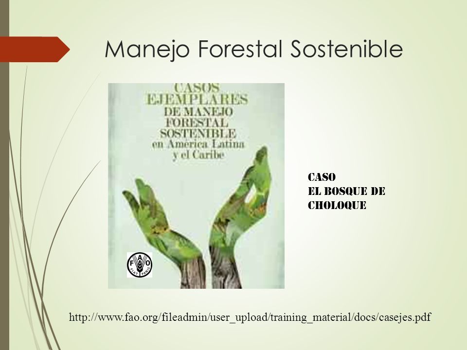 Manejo Forestal Sostenible CASO EL BOSQUE DE CHOLOQUE http://www.fao.org/fileadmin/user_upload/training_material/docs/casejes.pdf