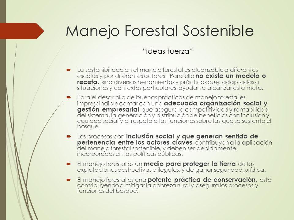 Manejo Forestal Sostenible La sostenibilidad en el manejo forestal es alcanzable a diferentes escalas y por diferentes actores. Para ello no existe un