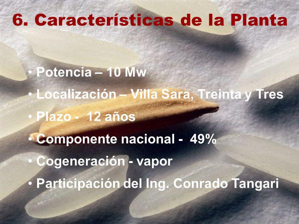 6. Características de la Planta Potencia – 10 Mw Localización – Villa Sara, Treinta y Tres Plazo - 12 años Componente nacional - 49% Cogeneración - va